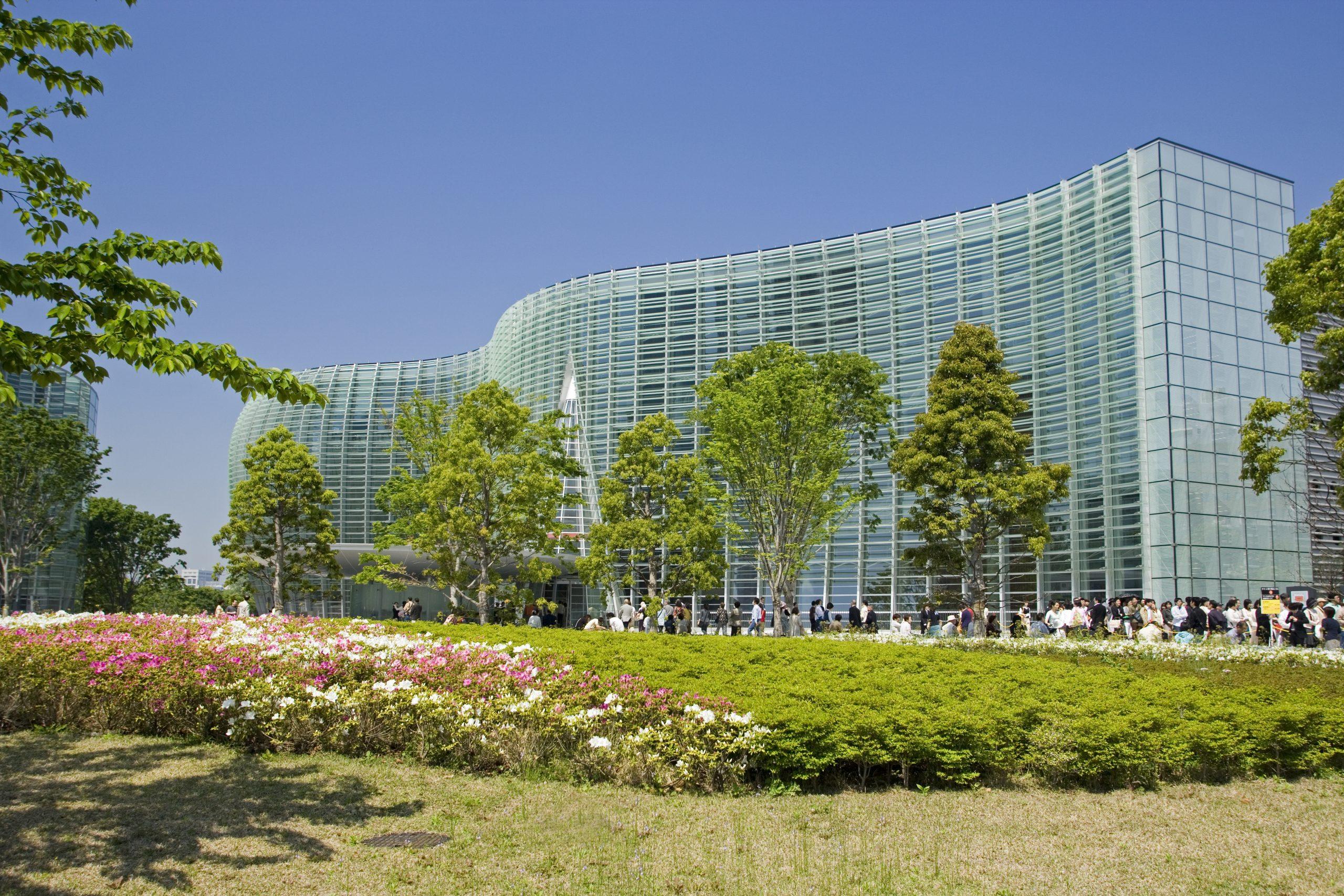新緑と国立新美術館