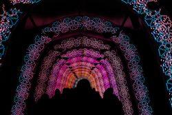 光のトンネル(クリスマスイルミネーション)